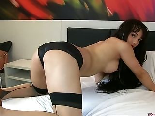 Anal Sex, Big Tits, Blowjob, Brunette, Hardcore, Panties, Shemale, Slim, Stockings, Tranny,