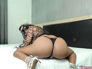 Ass, Shemale, Tranny,